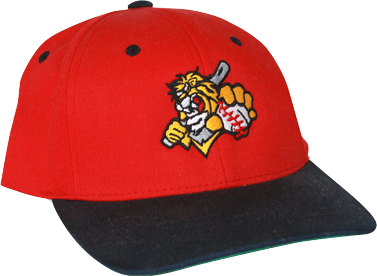 Lion Baseball Embroidered Hat